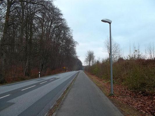 Straßenbeleuchtung an der L03
