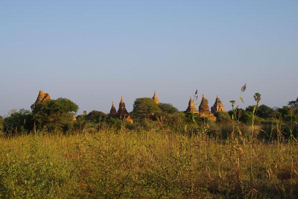 Überall sieht man die Spitzen der Stupas
