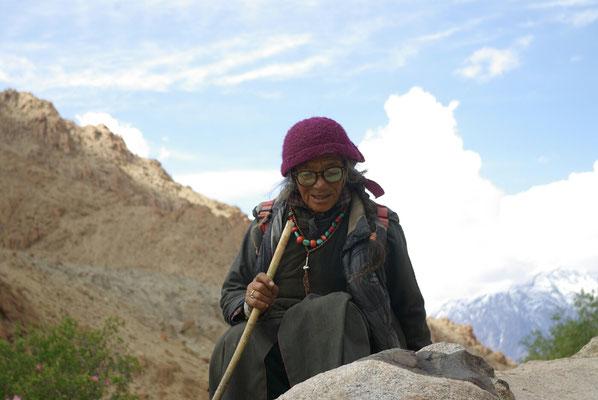 Saspochey: Sie hütet die Yakmischlinge des Dorfes