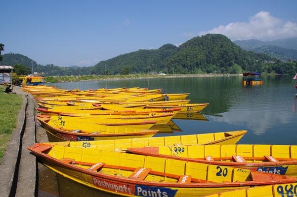Gelbe Boote auf dem Begnas Lake