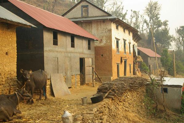 Häuser mit Wänden aus Metall neben traditionellen Häusern
