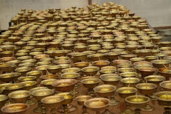 Saspochey: 500 Butterlampen ( nicht nachgezählt)
