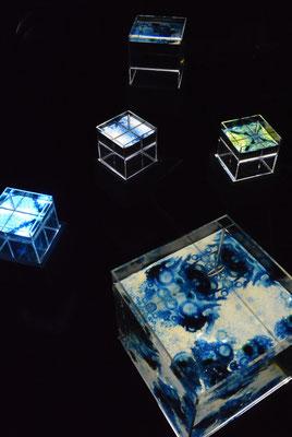 「10このみずたまり」 アクリルケース、水、油彩、ミクストメディア 2014