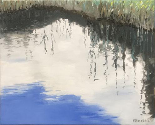 Reflectie van wolken en riet
