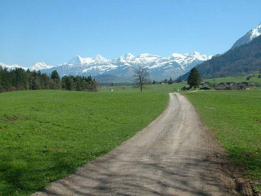 Mit dem E-Bike unterwegs auf der Stockental Route: das Reutigmoos mit Eiger, Mönch und Jungfrau