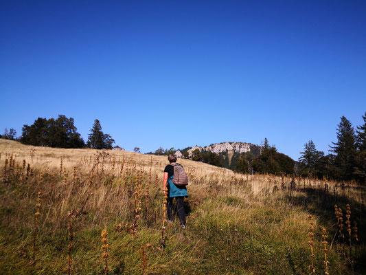 Wanderung Bettlachstock