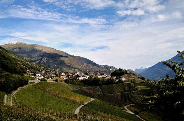 Weinberg Wanderung Wallis