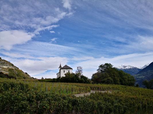 Wanderung durch die Rebberge im Wallis