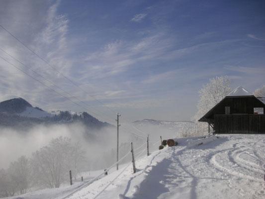 DIe einfachste Winterwanderung ist Weissenstein Hinterweissenstein- schöne Aussicht und auch als sichere Schneeschuhtour selber machbar. Ca. 45 Min. bis 1 Std. gemütlich flach!