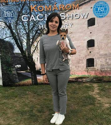 Поездка на выставки в Венгрию