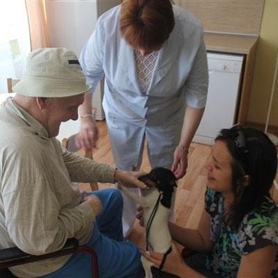 канис-терапия, канистерапия, анималотерапия, собаки для жизни, собака-помощник, собака-терапевт, той-фокстерьер, той-фокстерьер питомник, той-фокстерьер купить