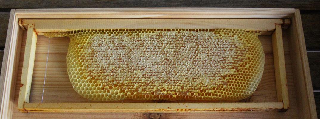 Cadre de miel de hausse