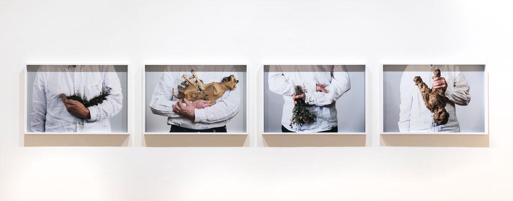 Lois Weinberger Kunst kaufen. Ausstellung in der Galerie Krinzinger.