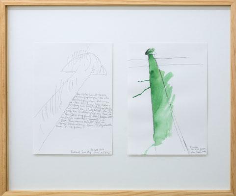 Lois Weinberger Kunst kaufen im Galerie Krinzinger Shop