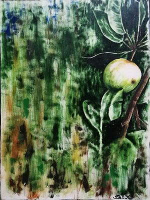Apfelbaum 1996, Acryl auf Pappe, 40x60, vergeben