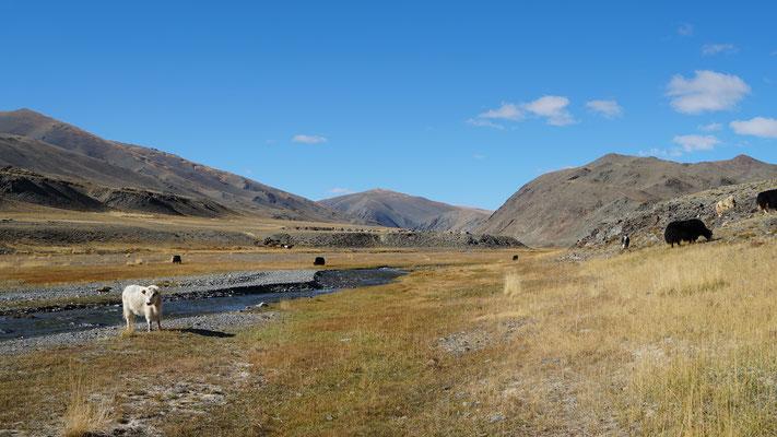 Landschaft unterwegs ins Gebirge