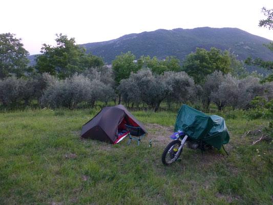 Camping in den Oliven