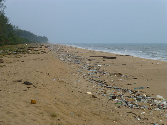 vermüllter Strand an der Ostküste! leider keine Seltenheit!