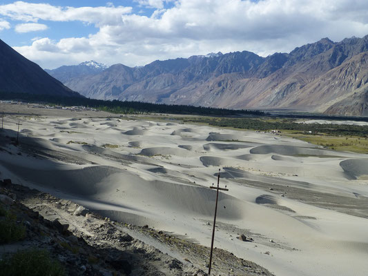 Sand Dunes near Hundarr, Nubra Valley