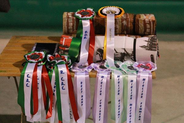 Alcuni dei Premi del Raduno