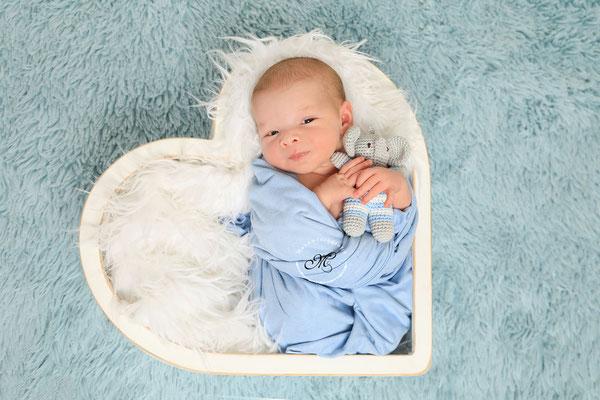 Neugeborenenshooting Kreis Heinsberg