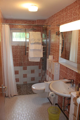 Bathroom with floor-level wellness shower