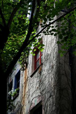 Wenen - Hunderdwasserhaus