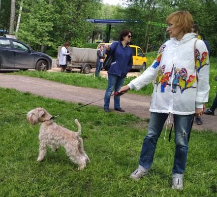 выставка 19.05.2018 г. Санкт-Петербург