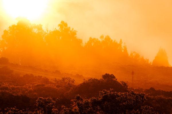 Maui: Haleakala National Park: Welcome to the house of sun
