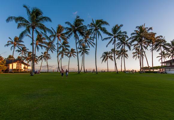 Kauai: Hanalei Valley: Kiahuna Plantation Resort