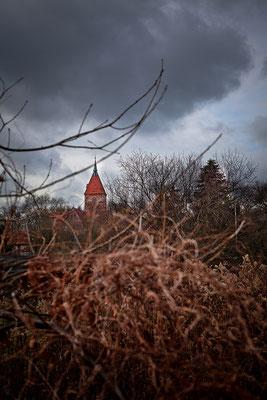 Wildeshausen: Alexanderkirche 2016