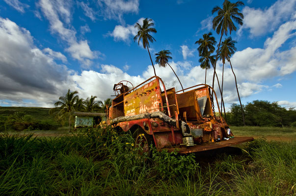 Kauai. Hawaii 2008