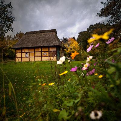 Dötlingen: Fachwerk-Bauernhaus 2013
