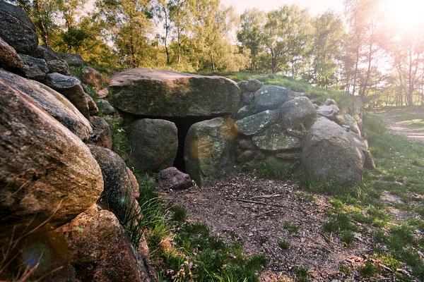 Kleinenkneter Steine: Megalithanlage 2008