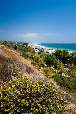 Malibu: Coast Driving