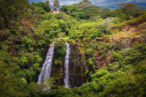 Kauai: Wailua: 'Opaeka'a Falls