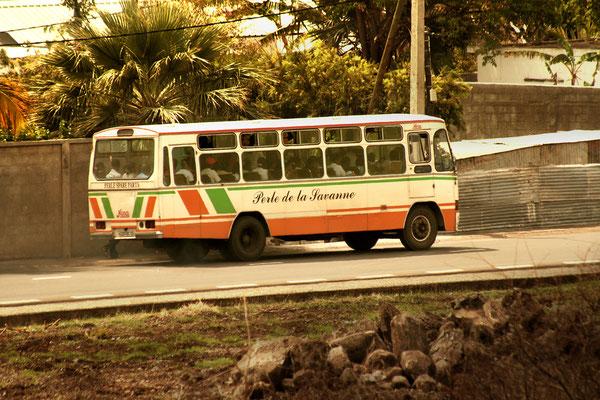 Tamarin: L'Arrêt de Bus: Perle de la Savanne