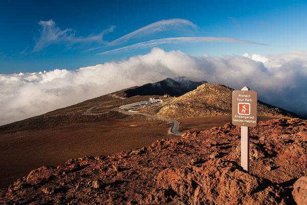 Maui: Haleakala National Park: Walking one of the trails