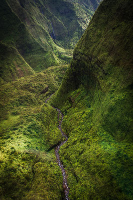 Kauai: Helicopter Flight: Along the rainiest mountain range