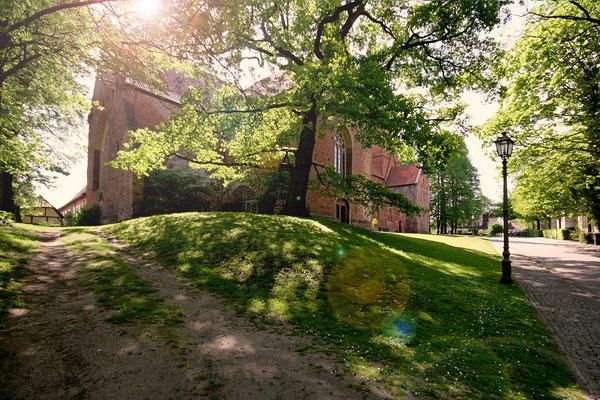Wildeshausen: Alexanderkirche 2008