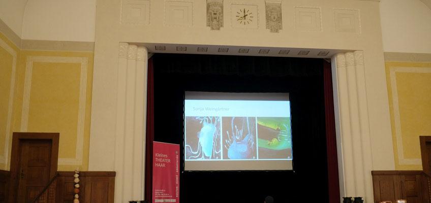 Videoinstallation aller Kunstwerke |  Preisverleihung des oberbayerischen Kunstförderpreises SeelenART 2020 im kleinen Theater Haar  | Foto: Martin Göllner