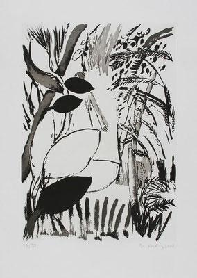 05, Zuckertusche, Aquatinta, Papierformat 53x40cm