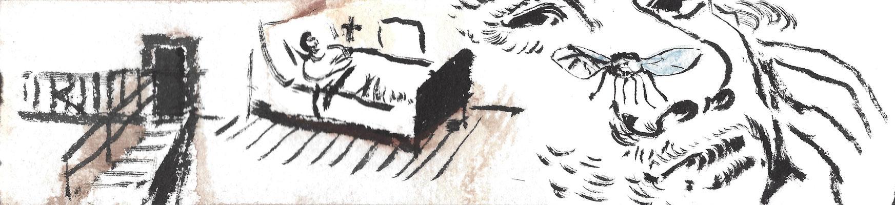 Streifen 2, Bild 5