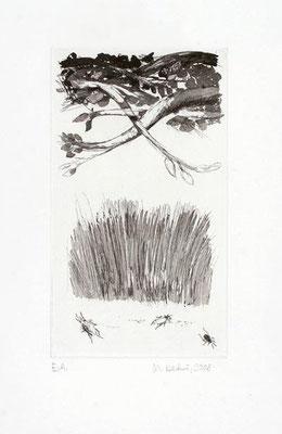 02, Ätzradierung, Aquatinta, Papierformat 38x27cm
