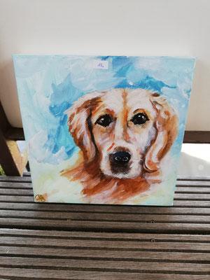 Hund  3 D Bild,  30 x 30 cm                                                                            20,00€