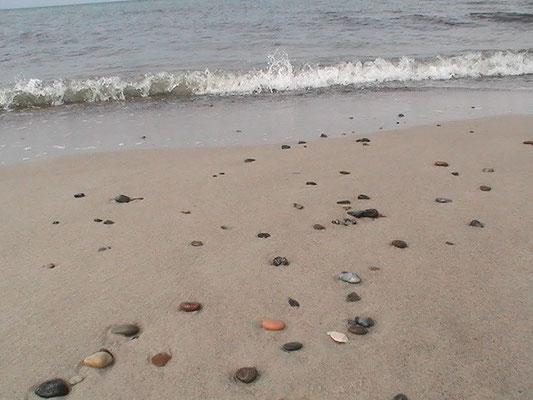 Am Strand vom Darßer Ort an der Ostsee
