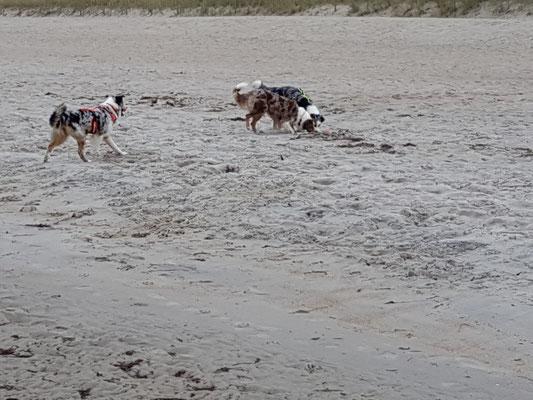 Mächtig viel Sand hier!