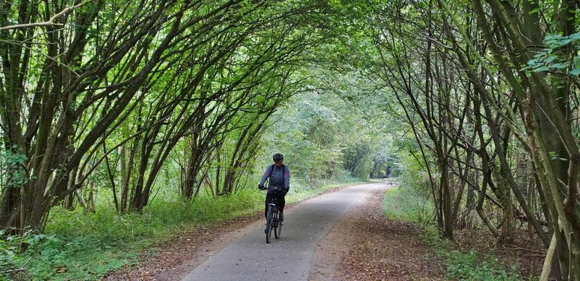 Ein natürlicher Tunnel bei IJzerenbosch