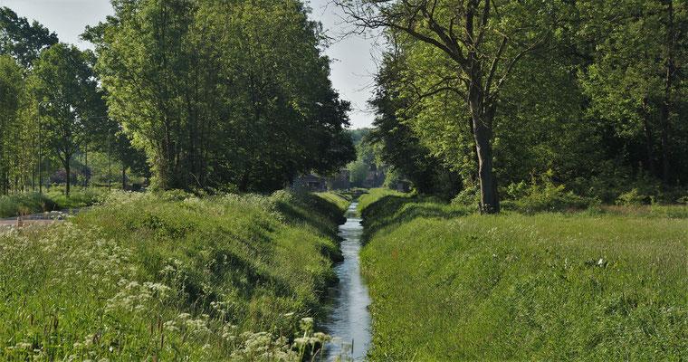 Sicht auf den Rodebach