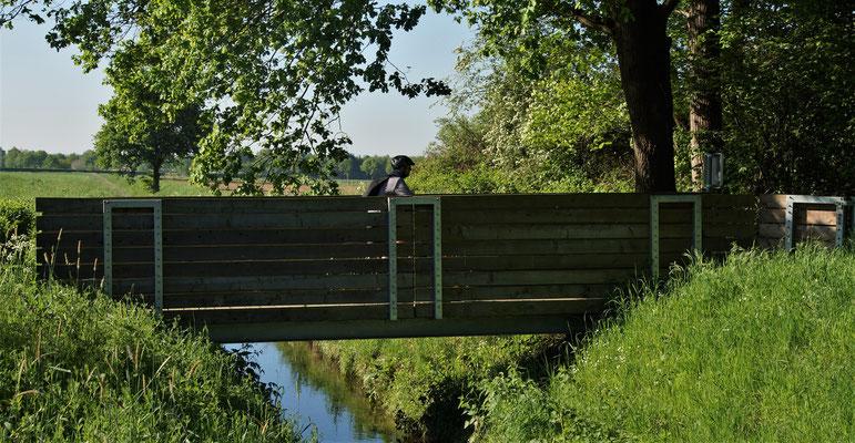 Die Brücke führt in die NL